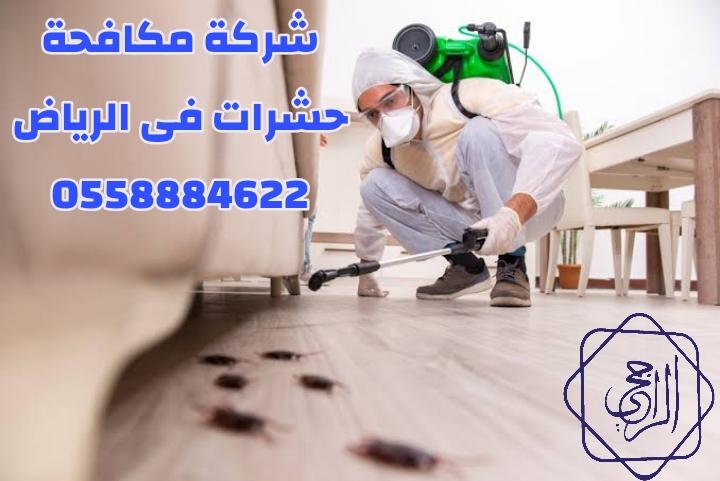 شركة مكافحة حشرات فى الرياض 0558884622